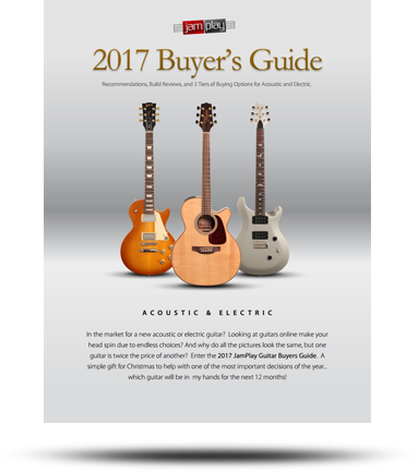 Download this Guide - Free