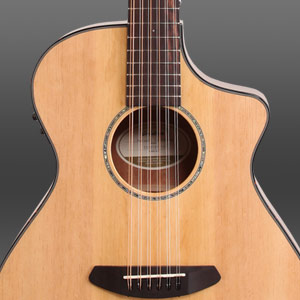 Breedlove Pursuit 12